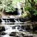 Enchanted stream, Bowlees_0258lq